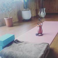 Yogafulの画像